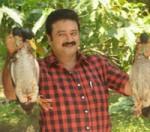 Summer Easter Vishu 2009 Releases