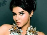 Asin Ate Insect Salman Awestruck Aid