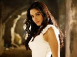 Asin Is Kapoors Daughter For A Day Aid