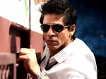Sharukh Is The Tom Cruise Of Bollywood