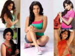 Hottest South Indian Actresses 117112 Pg