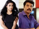 Jewel With Mammootty Again