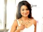 Tv Star Nigaar Khan Marriage