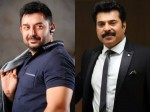 Wow Mammootty Arvind Swamy Share The Screen Again