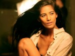 Actress Poonam Pandey Undergoes Abortion