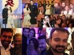 Asin Rahul Wedding Reception Photos