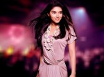 Asin Quits Acting After Marriage