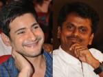 Mahesh Babu S Staggering Remuneration Murugadoss Film