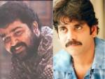 Reason Behind The Flop Spadika Telugu Remake Vajram