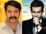 Prithviraj Not Part The Mammootty S Next