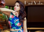 Pack Six Strays Attack Kannada Actress Parul