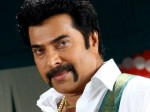Again Bollywood Actress Coming Mammootty