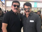 Mammootty To Work With Priydarshan Next