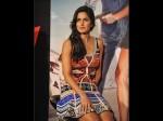 Katrina Kaif Lying Slapped Fan Revealed The Truth