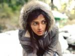 Amala Pauls Himalayan Journey Pics Getting Viral In Social Media