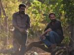 Thondimuthalum Driksakshiyum Box Office 11 Days Kerala Collections