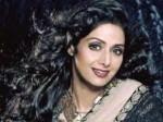 Hansal Mehta Wants Vidya Balan Play The Late Sridevi Her Biopic