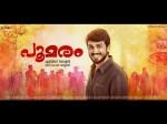 Kalidas Jayaram S Poomaram Review Schzylan