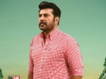 Mammootty Is Busy With Lot Of Films