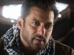 Salman Khan Found Guilty Blackbuck Poaching Case