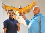 Jayaram S Make Over Panchavarna Thatha Movie