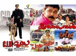 July 4th Dileep S Lucky Day