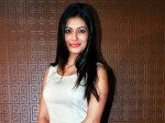Payal Rohatgi Enrages Twitter As She Shares Her Views On Kerala Flood