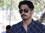 Actor Siddharth Attacks Thackeray Marathi Film Trailer Nawazuddin Siddiqui