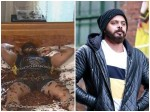 Sreesanth Throws Major Tantrum While Performing Cockroach Stunt