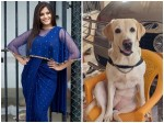 Varalaxmi Sarathkumar Introduce Best Co Star Her Life