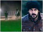 Salman Khan Beats A Horse In A Race