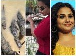 Vidhya Balan Feeding Alligators Video Viral