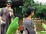 Divya Unni S Latest Photos From Singapore See The Latest Clicks