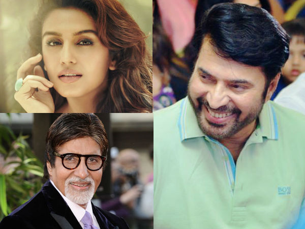 mammootty-huma-qureshi-big-b