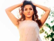 https://malayalam.filmibeat.com/img/2013/08/22-bhama-8.jpg