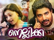 http://malayalam.filmibeat.com/img/2015/03/24-1427168379-nellikka.jpg