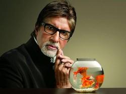 Isro Amitabh Bachchan Abhishak Bachchan Rocket Troll