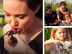 Angelina Jolie And Her Children Eat Tarantulas
