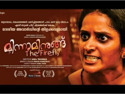 Minnaminung Director Anil Thomas Against Audience