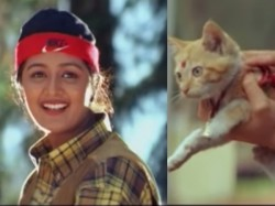 Manju Warrier Sent Her Cat Summer Bethlehem