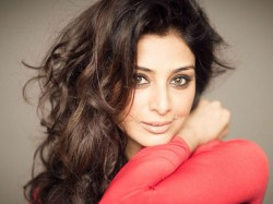 Tabu Is Fed Up One Question