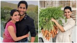 Samantha Akkineni Shared Her Carrot Harvest Picture Went Viral